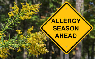 Common Mold Allergies in the Fall